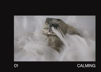 Bildschirmfoto 2019-08-18 um 18.20.42